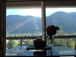 LUXURY 3 BD CONDO CLOSE TO THE POOL AND DOWNTOWN - Glenwood Springs vacation rentals