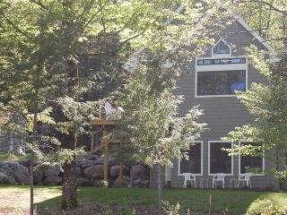 Beautiful Year Round Home on Great Moose Lake - Newport vacation rentals