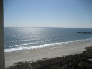 ON OCEAN MAY ONLY $900/wk June-Aug $1500-$1775/wk - Myrtle Beach vacation rentals