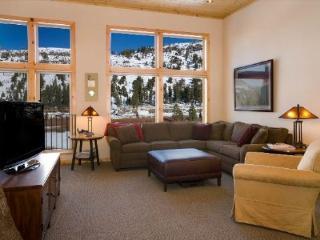 Lost Cabin #2 , splendid two bedroom town home - Kirkwood vacation rentals