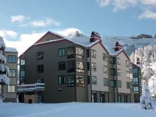 Sun Meadows Condo at Kirkwood 1 bdm ~ RA1481 - Kirkwood vacation rentals