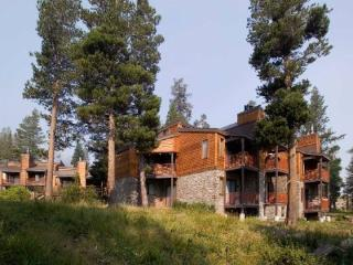 Edelweiss #21 Picturesque Meadow Condo - Kirkwood vacation rentals