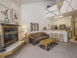 Alaskan Style Two Bedroom Loft, Sun Meadows Four #312 - Kirkwood vacation rentals