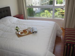 Luxury Palermo 2bd pool, park, gym, 24x7 security - Buenos Aires vacation rentals