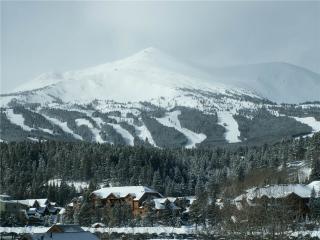 Summit County Hale Breckenridge - Breckenridge vacation rentals