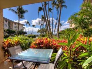 Ideal 2 BR/2 BA Condo in Wailuku (Kanai A Nalu #109) - Maalaea vacation rentals
