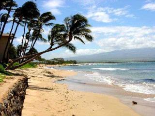 Kanai A Nalu #301 - Maalaea vacation rentals
