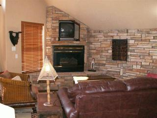 Safari Suite - Breckenridge vacation rentals