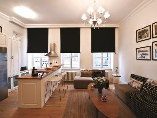 1BR★GALATA TOWER★DESIGNER FURNITURE★COZY! - Istanbul vacation rentals