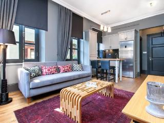 2BR★GALATA TOWER★DESIGNER FURNITURES★COZY! - Istanbul vacation rentals