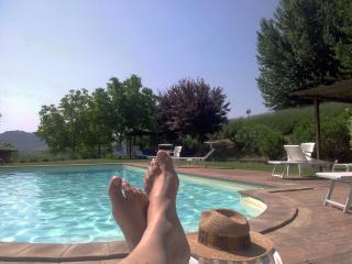 4people self catering apartment in villa with pool - Todi vacation rentals