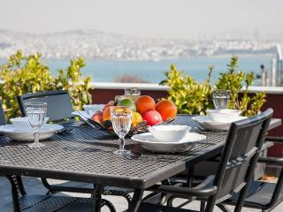 3BR-2BA, GALATA TOWER, SEA VIEW, PRIVATE TERRACE! - Istanbul vacation rentals