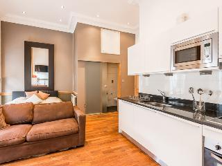 Marble Arch modern Studio Apartment for 4 guests - London vacation rentals