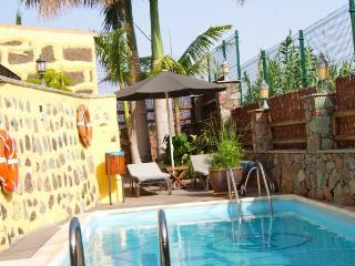 CR EL MOLINO - La Aldea de San Nicolas de Tolentino vacation rentals