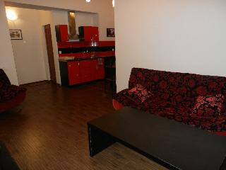 A Luxury Apartment in Yerevan - Yerevan vacation rentals