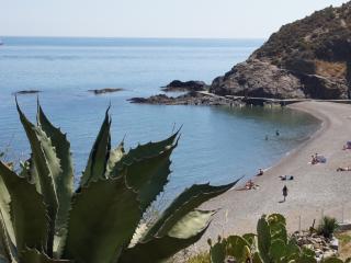 Propriété Bord de Mer - l'Ouille - Collioure - Collioure vacation rentals