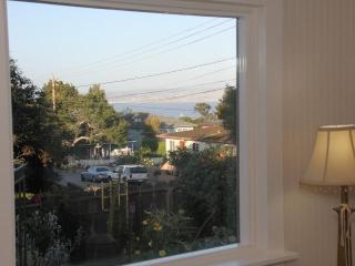 Casa Amarilla, Walk to Aquarium/Cannery Row/Shops - Monterey vacation rentals