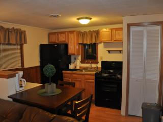 2 Bd Apt in Oswego short drive to Lake Ontario & Pulaski- Great Fishing! - Pulaski vacation rentals