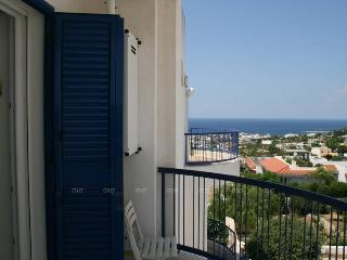 Holiday house with great seaview terrace - SA175 - Santa Maria al Bagno vacation rentals