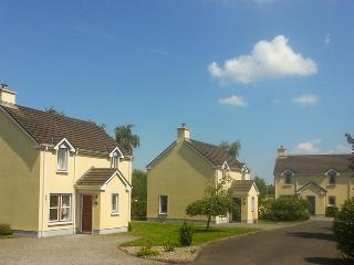 Cozy 3 bedroom Nenagh House with Internet Access - Nenagh vacation rentals