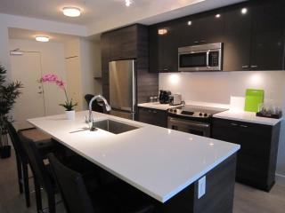 Brand new WITH PATIO short walk to SKYTRAIN - North Vancouver vacation rentals