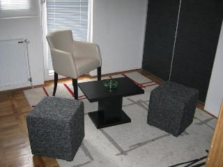 Great apartment in downtown Nis - Nis vacation rentals