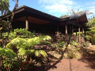 Volcano Rainforest Lodge - Hot tub under the stars - Volcano vacation rentals