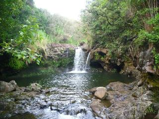 Aloha Nature Lovers !   ( Horses and Waterfalls ) - Hilo vacation rentals