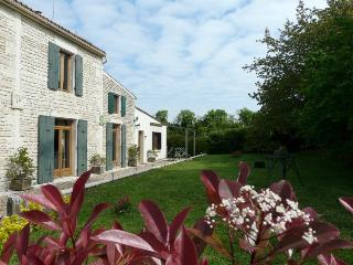 Gîte du Crin Blanc à Surgères Charente-Maritime - Surgeres vacation rentals