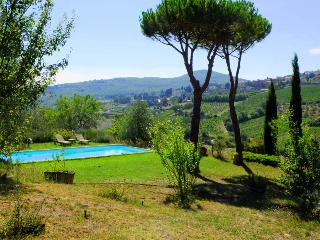 A paradise for families and couples!!! - Radda in Chianti vacation rentals