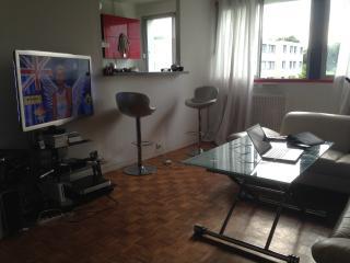 2 BEDROOM APART IN SEVRES close to paris - Boulogne-Billancourt vacation rentals