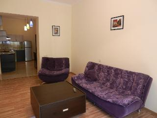Luxury Apt. in the Heart of Yerevan - Yerevan vacation rentals