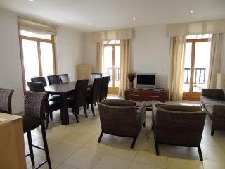 Spacious 4 bedroom Condo in Chateau-d'Oex - Chateau-d'Oex vacation rentals