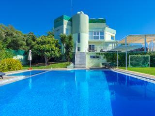 Perfect 6 bedroom Villa in Nea Kydonia - Nea Kydonia vacation rentals