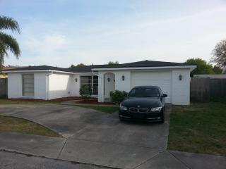 Nice 3/2 just remodeled, and private pool !! - Port Richey vacation rentals