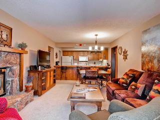 Bronze Tree 204 - Steamboat Springs vacation rentals