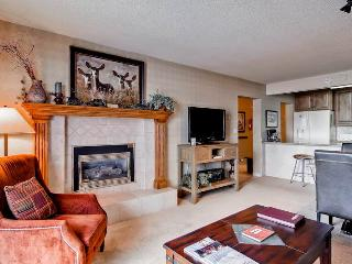 Bronze Tree 305 - Steamboat Springs vacation rentals
