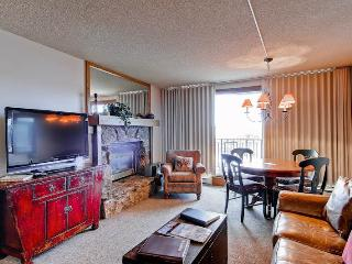 Bronze Tree 502 - Steamboat Springs vacation rentals