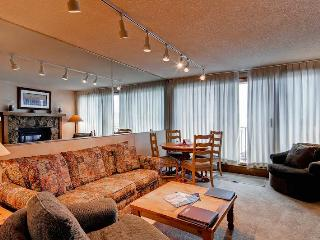 Bronze Tree 504 - Steamboat Springs vacation rentals