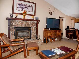 Bronze Tree 607 - Steamboat Springs vacation rentals