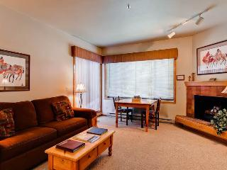 Snow Flower 104 - Steamboat Springs vacation rentals