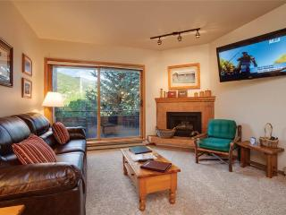 Snow Flower 202 - Steamboat Springs vacation rentals