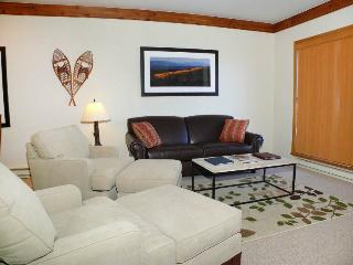 Snow Flower 205 - Steamboat Springs vacation rentals