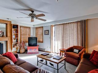 Torian Plaza 505 - Steamboat Springs vacation rentals