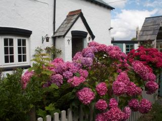2 bedroom Cottage with Internet Access in Brentor - Brentor vacation rentals