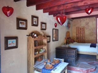 Loft Casa Amor San Miguel de Allende - San Miguel de Allende vacation rentals