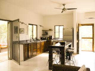 EXCELLENT OPTION IN TULUM: NEW CONDO COBA 2 BEDROOMS WITH POOL IN A JUNGLE PLOT. - Tulum vacation rentals