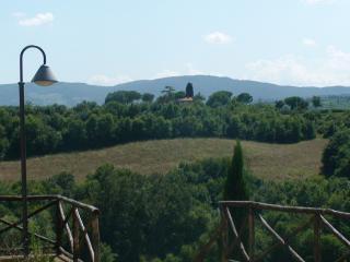 Beautiful Tuscany  villa near Montepulciano, air condit, swimming pool, wifi - Montepulciano vacation rentals