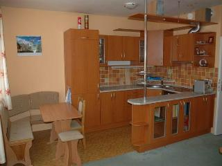 Nice flat with good connection to the city center - Prague vacation rentals