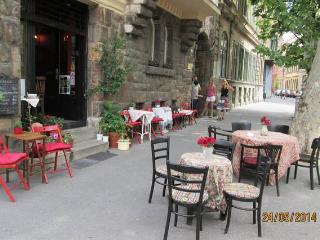 Greenaps1 - studion+garden in downtown Budapest - Budapest vacation rentals